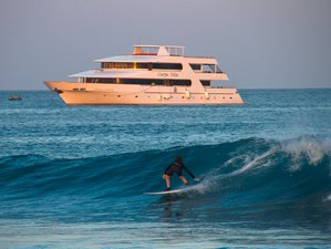 8 Days Mindblowing Surf Camp Maldives