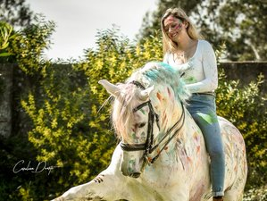 5 Days Lusitano Dressage Riding Holiday in Lisbon District, Portugal
