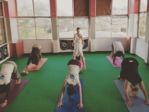 28 Days 200hr Yoga Teacher Training in India