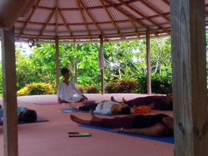 11 Days Integrated Back To Wholeness Reset Yoga and Meditation Holiday Portland, Jamaica