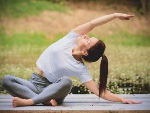 6 Tage Yoga und Basenfasten nach der Wacker-Methode im Erzgebirge