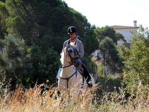 8 Day Pure Andalusia Horse Riding Holiday in Fuengirola, Malaga, Costa del Sol