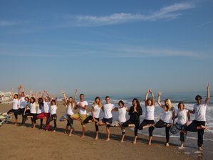 28 Day 300-Hour Yoga Teacher Training on The Beach in Misano Adriatico, Province of Rimini