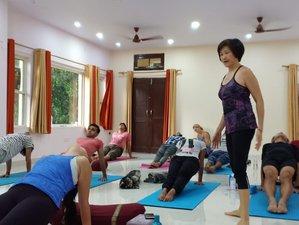 200 Hour Yoga Teachers Training Course (TTC) in Rishikesh, India