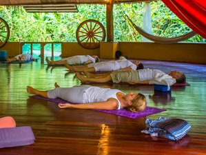 8-Daagse Wellness, Meditatie en Yoga Retraite in Cahuita, Costa Rica
