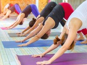 5 Day 50-Hour Kundalini Yoga Teacher Training Course in Rishikesh, Uttarakhand