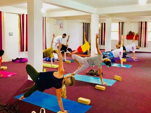 28 Day 300-Hour Dual Style Yoga Teacher Training in Dharamsala
