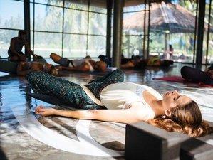 8 jours en stage de yoga ashtanga et vinyasa à Koh Phangan, Thaïlande