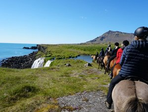 5 Days Astonishing Horse Riding Holiday in Snæfellsnes, Iceland