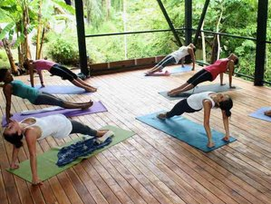 8 Days Surf and Yoga Retreat / Aerial Silk Costa Rica