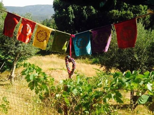 7 Days Nature Eco Meditation and Yoga Retreat in Oleiros, Portugal