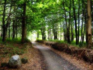 36 Days Camino De Santiago Route Self-Guided Walking Tour in Spain