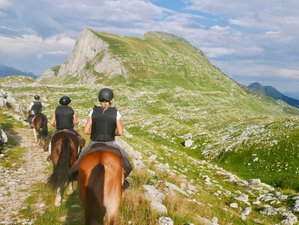 8 Days Legends of the Wolf Horse Riding Adventure in Montenegro