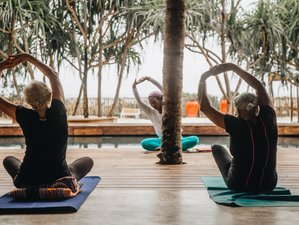 8-Daagse Ayurveda Studie, Kookles en Gezonde Yoga Retreat in Zanzibar, Tanzania