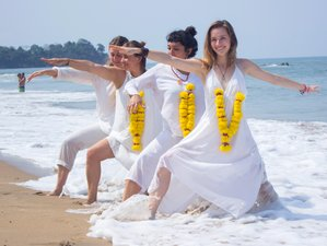23 Days 200 Hours Hatha and Ashtanga  Yoga Teacher Training in Goa, India