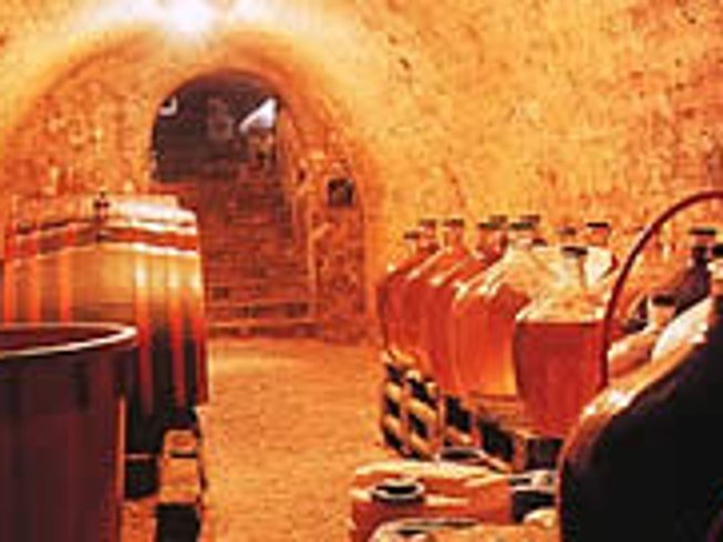 10 Days Wine Tour in Czech Republic