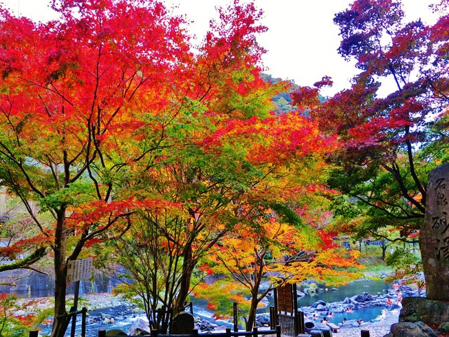 3 Days Autumn Color Hiking, Meditation, and Yoga Retreat in Kanto, Japan