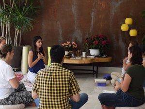 4 días de retiro de yoga y chakras en el Eje Cafetero, Colombia
