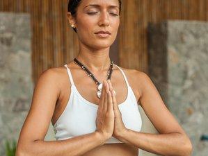 11 Day Reiki Level 3 and Master/Teacher and Detox Retreat in Koh Samui, Surat Thani