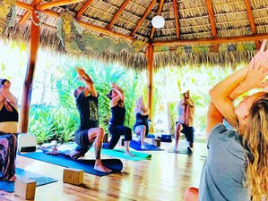 21 Day 200/300 -Hour Yoga Bohemia Yoga Teacher Training in Santa Teresa