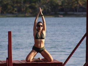 7 jours en formation de professeur de yoga certifiée à Draguignan, Provence