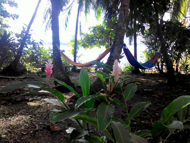 7 Days Radiant Energy Private Yoga Retreat in Panama