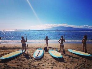 3 Days 25-Hour Stand Up Paddle Board Yoga Teacher Training Maui Hawaii, USA