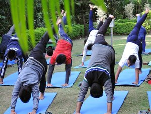 15 Days Life-Transforming Yoga and Meditation Retreat Rishikesh, India