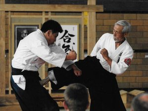 5 Days Summer Intensive Aikido Seminar in Washington DC, USA
