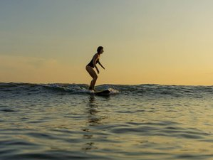 8 Day Balance Package with Yoga and Surf Lesson in Mirissa, Southern Province
