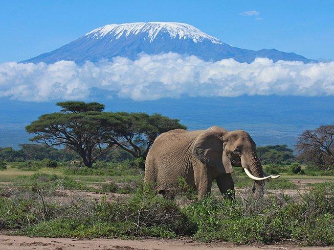 3 Days Tsavo East National Park Safari in Kenya