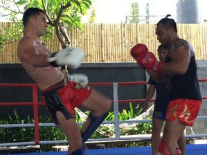 14 Days Pencak Silat, Boxing, and Muay Thai Camp in Bali, Indonesia
