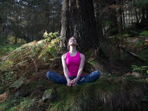 3 Days Meditation and Yoga Retreat England