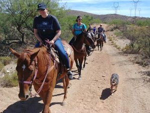 4 Day Long Weekend Horseback Riding and Ranch Vacation in Benson, Arizona