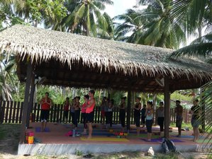 8 Days Christmas Meditation and Yoga Retreat in Thailand