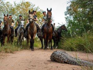 6 Days African Horseback Safari