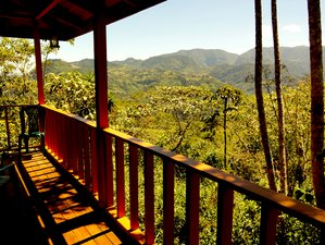 5 Day Yoga Retreat in an Eco-Village in Paraiso, Cartago
