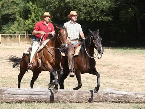8 Days Natural Western Horse Riding Holiday in Tuscany, Italy