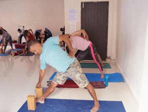 24 Days 200-Hour Intensive Yoga Teacher Training Alignment Course in Dharamsala, India