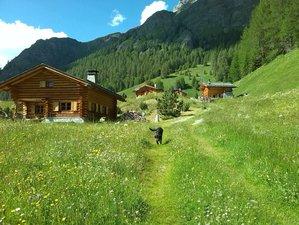8-Daagse Yoga Wandelweek in de Zwitserse Alpen