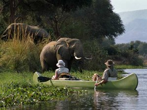 4 días de safari por el lago Manyara, Serengueti y el cráter de Ngorongoro en Tanzania