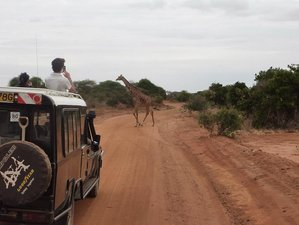 3 Days Classic Safari in Kenya