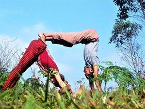 8 jours en stage de yoga, fitness et aventure avec Sthidhi dans le Kerala, Inde