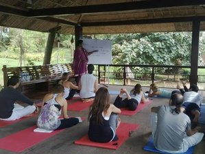 15 Days Ayurveda, Meditation and Yoga Retreat Kerala