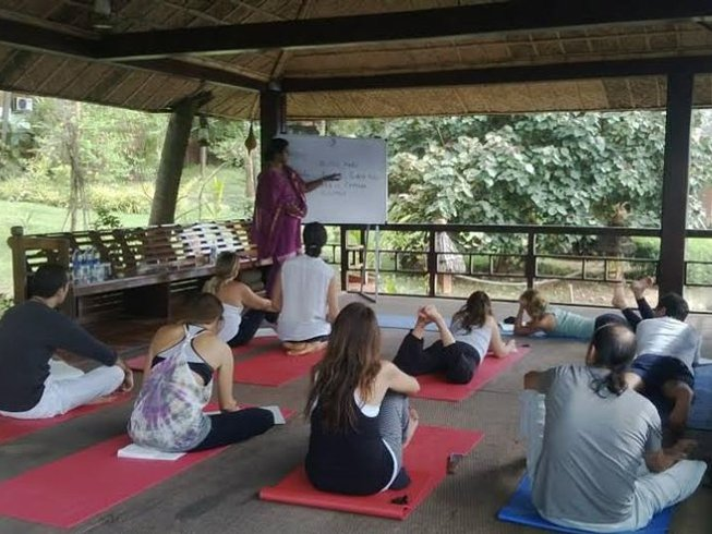 8 Days Ayurveda, Meditation, and Yoga Retreat in Kerala, India