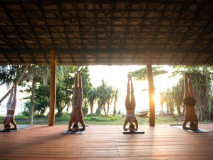 11 Day Yoga Holiday Workshop in Paradise in Talalla, Southern Province