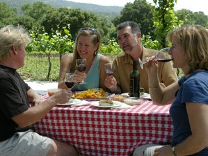 10 Days San Francisco Wine Tour & Trekking Holiday