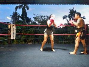 4 Days Phi Phi Island Tour and Muay Thai Training in Exotic Mai Khao, Thailand