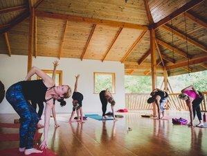 11 Day Ayahuasca, Meditation,  Breathwork, and Noya Rao Dieta in San Jose, Rivas