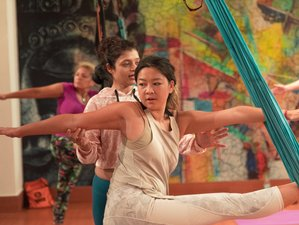24 Day 200-Hour Multi-Style Yoga Teacher Training in Rishikesh Including Aerial & Acro Yoga